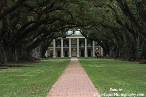A view of Oak Alley.  Leading up to Oak Alley are a line of old live oak trees.  It is a beautiful plantation.