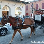 Horse and Buggy in New Orleans