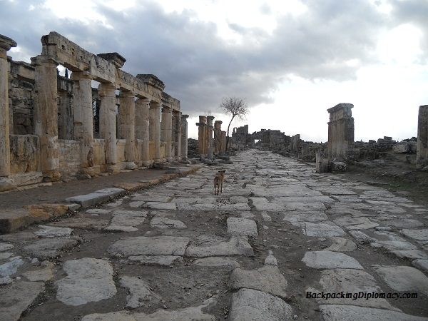 The road of Pamukkale. The dog led us on a tour around the facility.