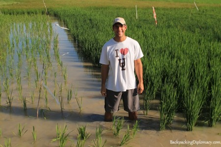 Me in a rice pond