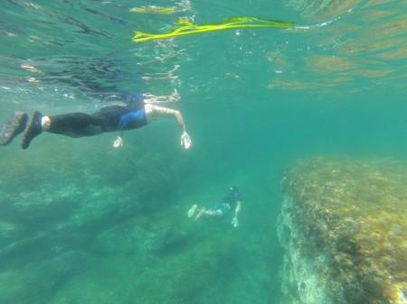 Snorkeling in Costa Brava Llança