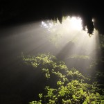 Rays of sunlight in the Camuy Caves